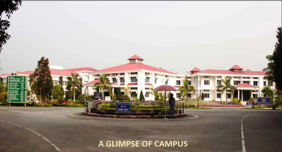 Glimpse of Campus